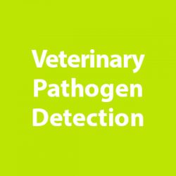 Veterinary Pathogen Detection