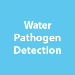 Water Pathogen Detection